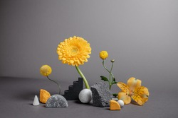 Creative and minimalistic staging of stones, varied shapes and vibrant plants. Modern geometric and natural background. Botanical backdrop with flowers. Trendy colors of 2021 year - gray and yellow.