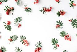 Creative arrangement made of rowan. frame, flat lay, top view. autumn wallpaper