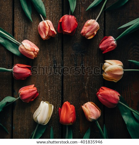 Creative arrangement of tulips on dark wooden background. Flat lay.