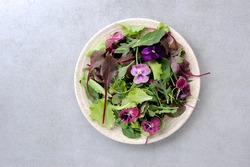 Creative arrangement with colorful    eatable  flowers and green leaves  salad over gray stone background. Flat lay. Minimal summer food concept.