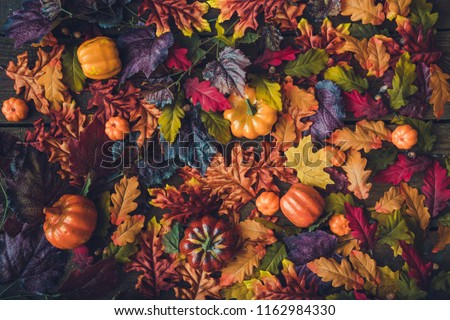 Creative autumn Halloween layout with various leaves and pumpkins on dark wooden backgound. Flat lay.