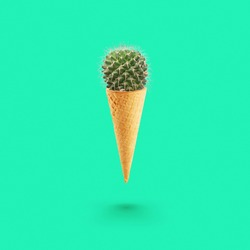 Creative cactus ice cream. Cactus in a waffle cone on a green background.