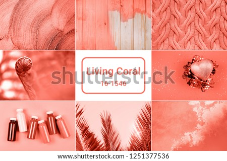 Creative collage inspired by Living Coral - Color of the Year 2019. #1251377536