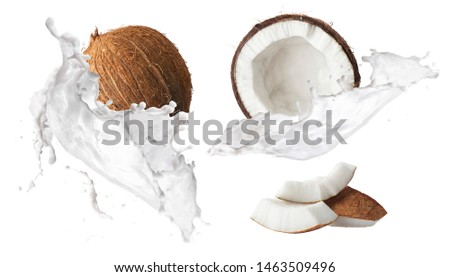 Creative Collection set with Flying in air fresh ripe whole and cracked coconut with milk splashes  isolated on white background. Food levitation concept. High resolution image, 3d concept #1463509496