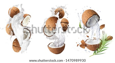 Creative Collection set with Flying in air fresh ripe whole and cracked coconut with milk splashes  isolated on white background. Food levitation concept. High resolution image, 3d concept #1470989930