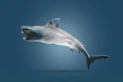 Creative concept background by photo of shark ( toy model) and transparent plastic bags.Environmentalism and   plastic awareness,with clipping  path.