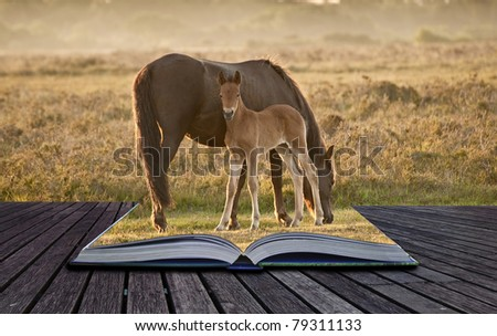 Creative concept idea of mare and foal of pony grazing in landscape coming out of pages in a book