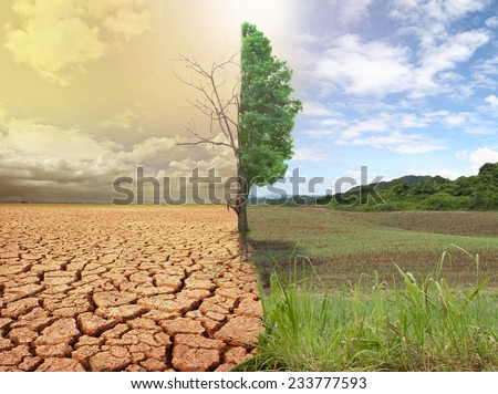 creative concept image compare of global warming.