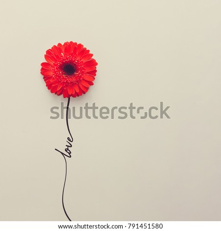 Creative concept made of red daisy flower with word love. Flat lay. Valentines day concept. #791451580