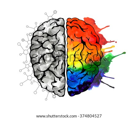 Creative concept of the human brain. Left and right side. Brain left and right side hemispheres concept.