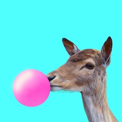 Creative deer. Look of youth. Animal with the pink bubblegum on blue background. Negative space to insert your text. Modern design. Contemporary art. Creative conceptual and colorful collage.