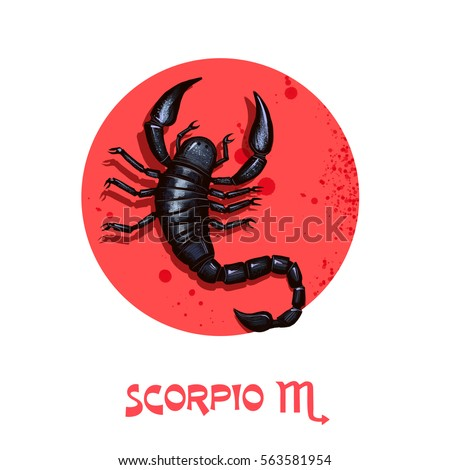 Creative digital illustration of astrological sign Scorpio. Eighth of twelve signs in zodiac. Horoscope water element. Logo sign with scorpion. Graphic design clip art for web and print. Add any text