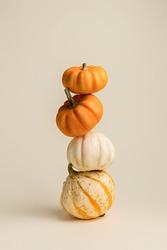 Creative Fall layout made of pumpkins. Autumn, Halloween or Thanksgiving season concept. Flat lay.
