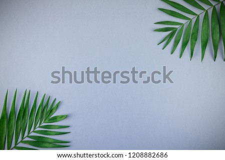 Creative flat lay top view of green tropical palm leaves on blue grey paper background with copy space. Minimal tropical palm leaf plants summer concept template for your text or design #1208882686