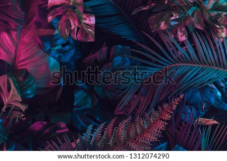 Creative fluorescent color layout made of tropical leaves. Flat lay neon colors. Nature concept.