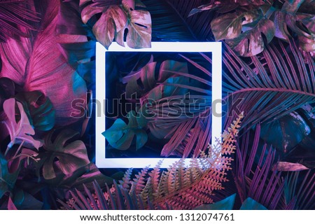 Creative fluorescent color layout made of tropical leaves with neon light square. Flat lay. Nature concept