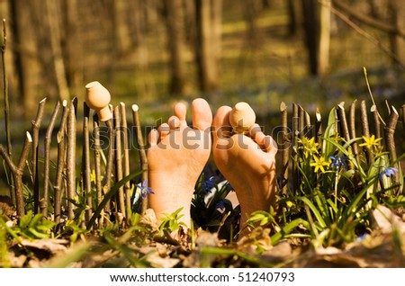 Creative funny nature pattern. Fence of palisade and woman\'s feet
