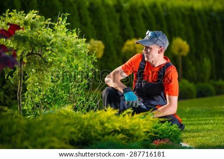 Creative Garden Designer. Professional Gardener Thinking About His Garden Design. Men At Work.