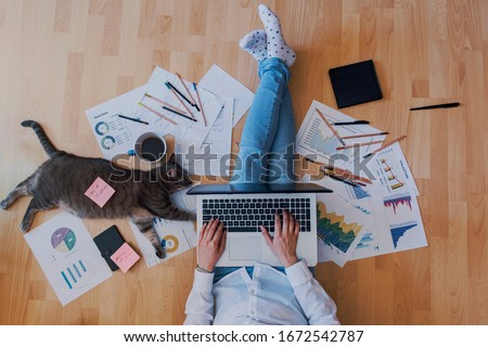 Photo of creative home work space - work from home concept - girl with cat