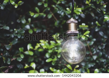 Creative idea.Concept of idea and innovation with tree background.