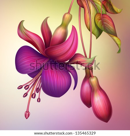 creative illustration of fuchsia flower with green leaves isolated - stock photo