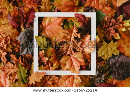 Creative layout made of autumn leaves with paper card note. Flat lay. Nature concept.