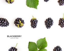 Creative layout made of blackberry with leaves on the white background. Flat lay. Food concept.