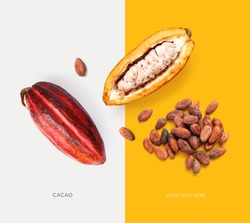Creative layout made of cacao fruit and cacao beans. Flat lay. Food concept. Macro  concept.