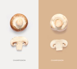 Creative layout made of champignon. Flat lay. Food concept.