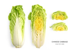 Creative layout made of chinese cabbage on a white background. Top view. Food concept.