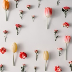Creative layout made of colorful flowers on white background with copy space. Spring concept. Flat lay.