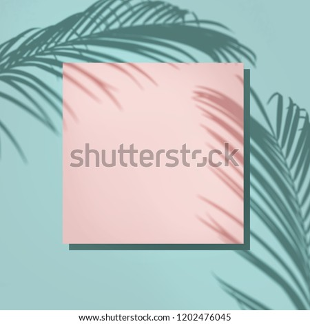 Creative layout made of colorful tropical leaves on white background. Minimal summer composition. Exotic concept with copy space. Border arrangement.