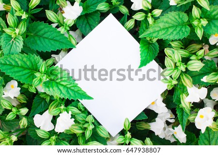 Creative layout made of flowers and leaves with paper card note. #647938807