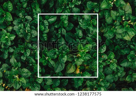 Creative layout made of flowers and leaves with paper card note. Flat lay. Nature concept #1238177575