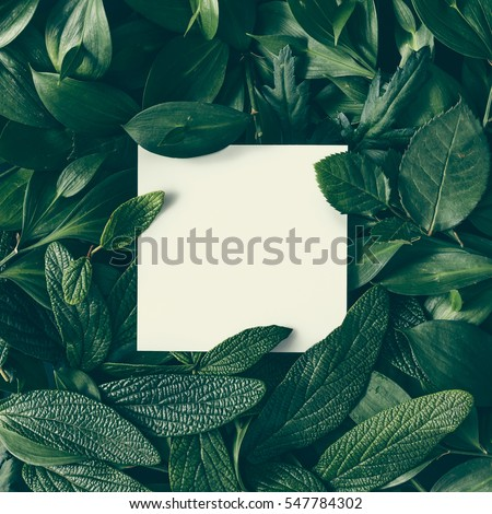Creative layout made of flowers and leaves with paper card note. Flat lay. Nature concept #547784302