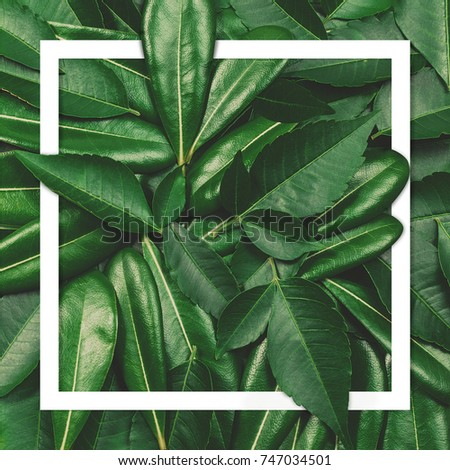 Creative layout made of flowers and leaves with paper card note. Flat lay. Nature concept #747034501