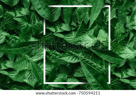 Creative layout made of flowers and leaves with paper card note. Flat lay. Nature concept #750594211