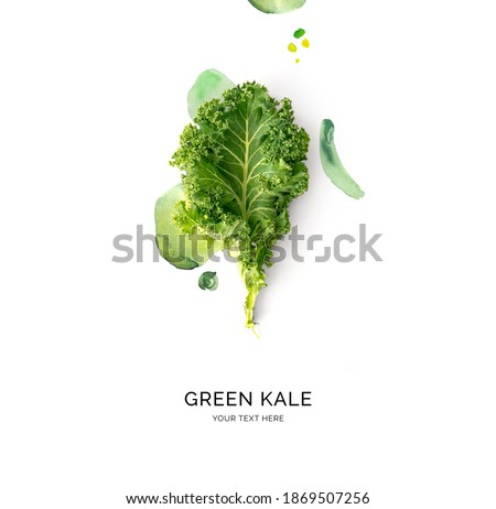Creative layout made of green kale with watercolor spots on the white background. Flat lay. Food concept.