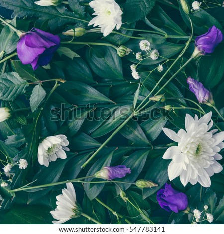 Creative layout made of green leaves and flowers. Flat lay. Nature background #547783141