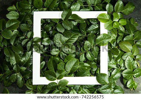 Creative layout made of  leaves with paper card note. Flat lay. Nature concept #742256575
