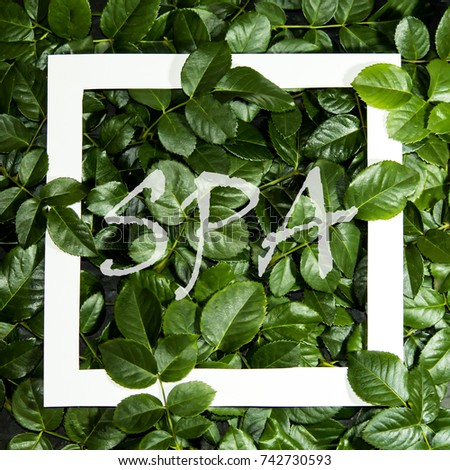 """Creative layout made of  leaves with paper card note. Flat lay. Nature concept. With the inscription """"spa"""" #742730593"""