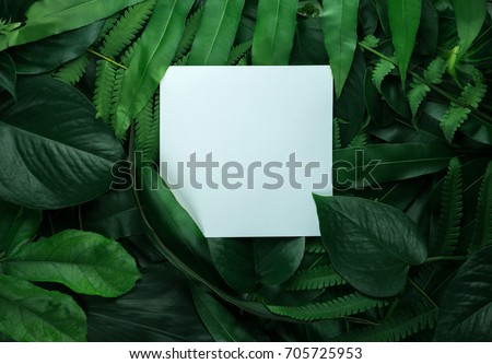Creative layout made of leaves with white paper card note. Flat lay. Nature concept #705725953