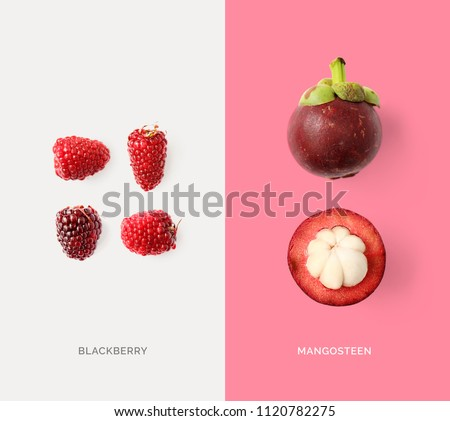 Creative layout made of mangosteen and blackberry. Flat lay. Food concept. Macro  concept. #1120782275