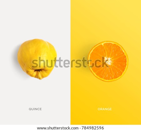 Creative layout made of quince and orange. Flat lay. Food concept. Macro  concept. #784982596