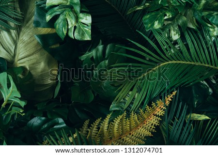 Creative layout made of tropical leaves. Flat lay. Nature concep #1312074701