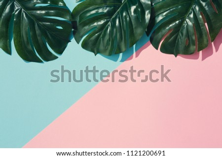 Creative layout made of tropical leaves on pastel pink and blue background. Minimal summer exotic concept with copy space. #1121200691