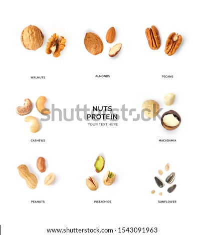 Creative layout made of walnuts, almonds, cashew, pistachio, peanuts, sunflowers and macadamia on white background. Flat lay. Food concept. Macro concept. #1543091963