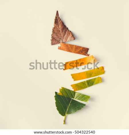 Creative layout of colorful autumn leaves. Flat lay. Season concept. - Shutterstock ID 504322540