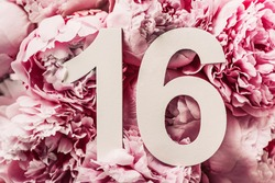 Creative layout. Peony flowers, digit sixteen. Birthday greeting card with inscription 16. Anniversary concept. Top view. Copy space. Stylish white numeral on flower background. Numerical digit.