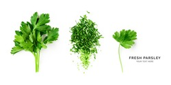 Creative layout with fresh parsley leaves. Bunch and chopped parsley composition on white background. Top view, flat lay. Floral design elements and banner. Healthy eating and dieting concept